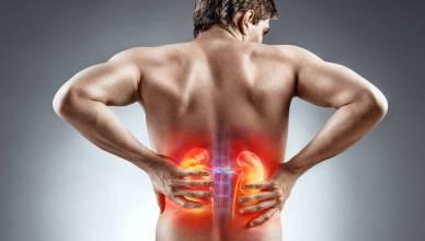 Detoxify Your Kidneys