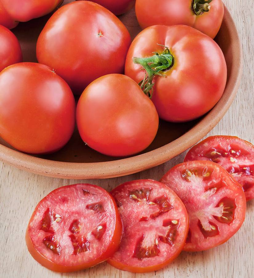 Better Boy tomato plant is a favorite of almost everybody who has ever grown tomatoes.