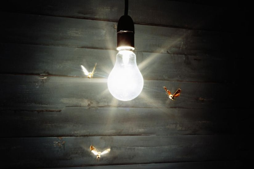 One of the most popular theories says that positively phototactic insects move toward lights because they act like a guide.