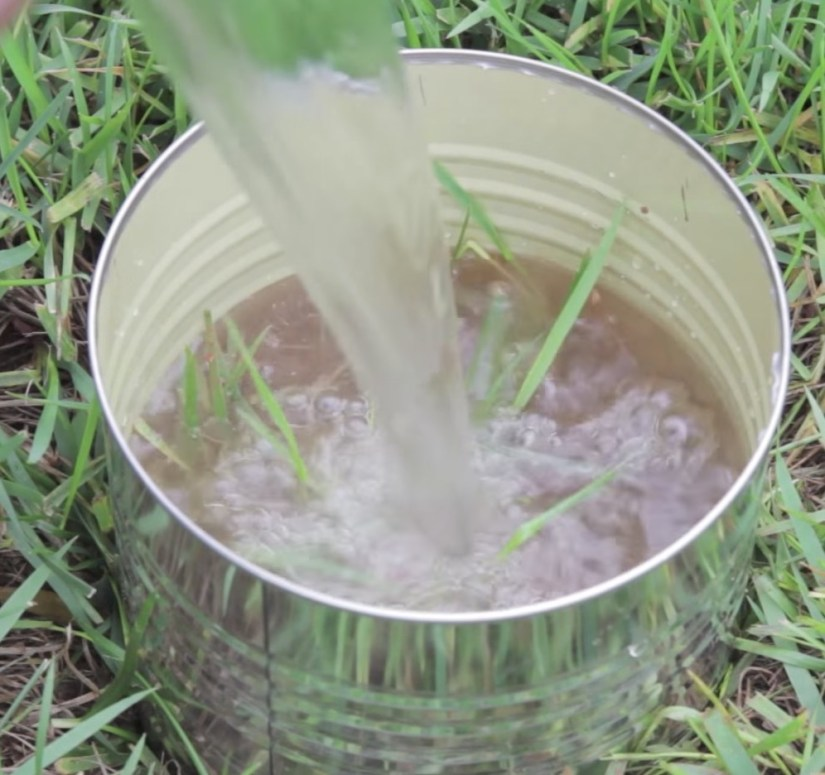If you suspect you have chinch bugs in your lawn, there are two ways to spot the bugs. First, use your hand to spread the turf near the soil and look for chinch bugs. A magnifying glass may help as chinch bugs are so small. The other way to look for chinch bugs is by conducting a tin can or float test.