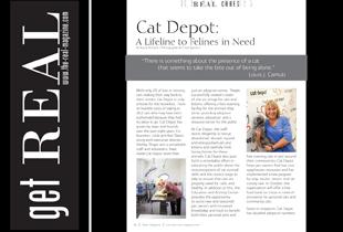feature-cat-depot