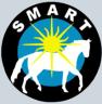 smarthorse