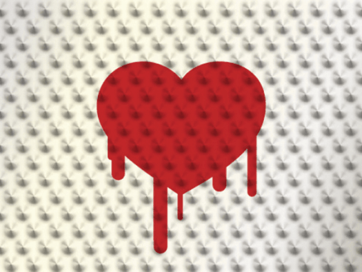 Hearthbleed bug in healthcare - Tackling the Heartbleed Bug in Health Care : Are you at Risk?