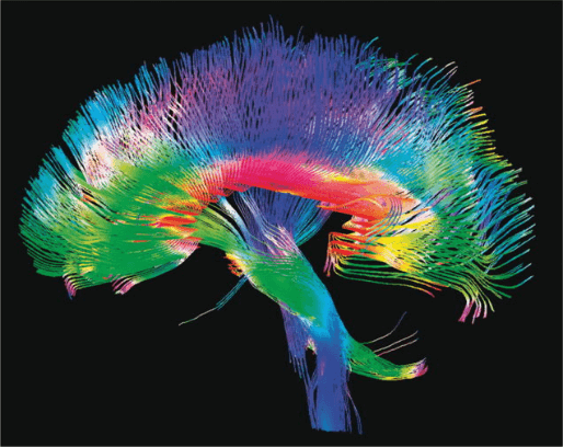 brain Biggest Innovations in Health Care Technology in 2015
