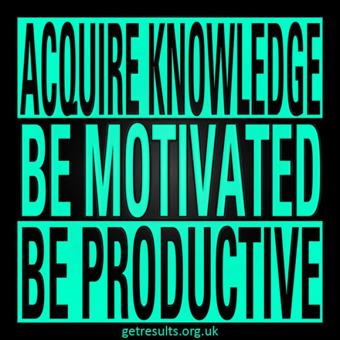 Get Results: knowledge motivation and productive