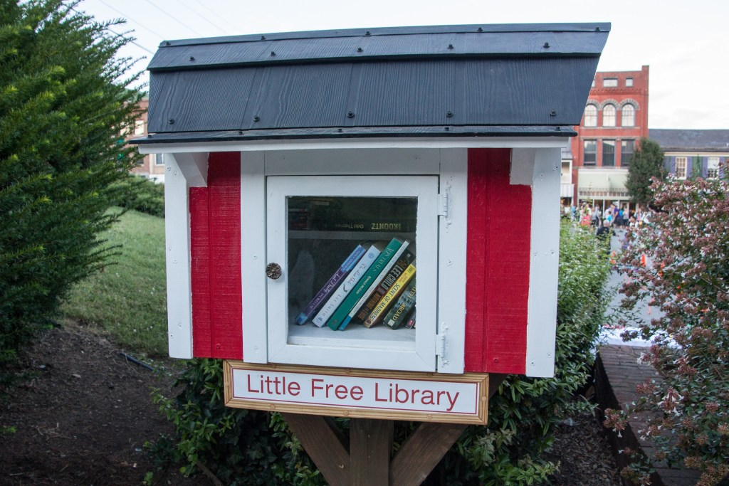 Starting a Little Free Library at our home