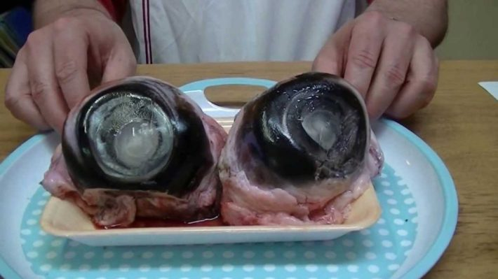 Bizarre Meals People Love to Eat | Tuna Eyeball - Japan