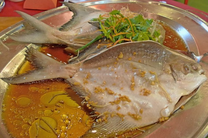 Bizarre Meals People Love to Eat | Ying Yang Fish - China/Taiwan