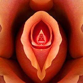 Photo of Vagina