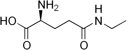 l-theanine and alcohol
