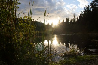 Lake with Imagick