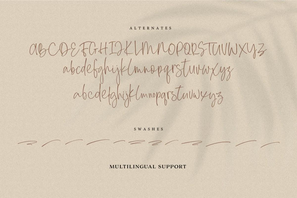 Everleigh Signature Script