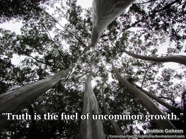 truth-is-the-fuel-of-uncommon-growth-bobbie-goheen