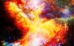 【2020年五星三心占い】金の鳳凰座は2020年から運気アップ!あなたにもモテ期到来?