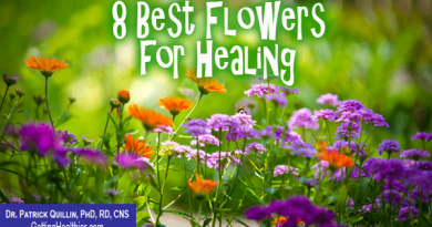 8 Popular Flowers for Healing