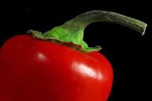 chilli getting healthier