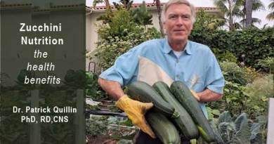 zucchini nutrition the health benefits