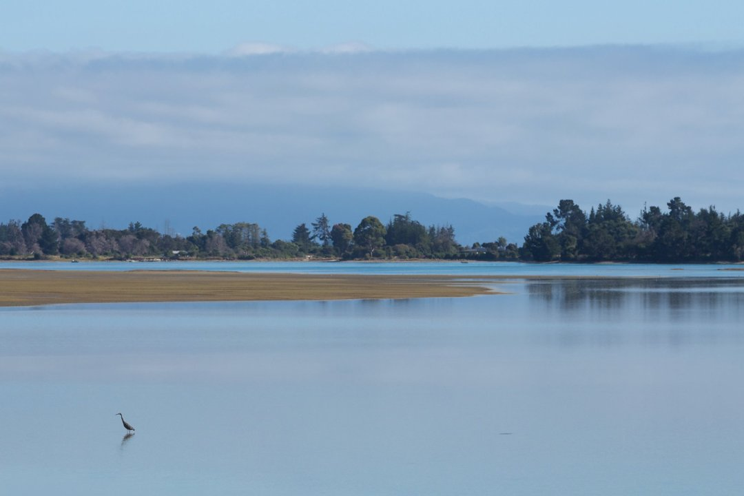 Moutere Inlet