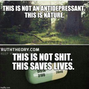 Antidepressant meme