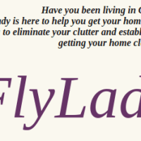 Do you know Flylady?