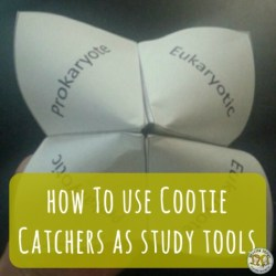 Teacher Tools: Fortune Tellers and Cootie Catchers as Study Tools