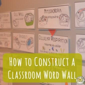Teacher Tools: Word Wall Construction
