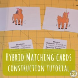Lesson Plan: Hybrid Cards Assembly Tutorial