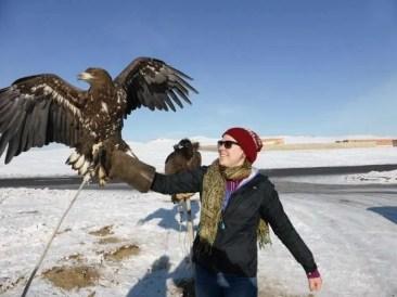 A very large bird