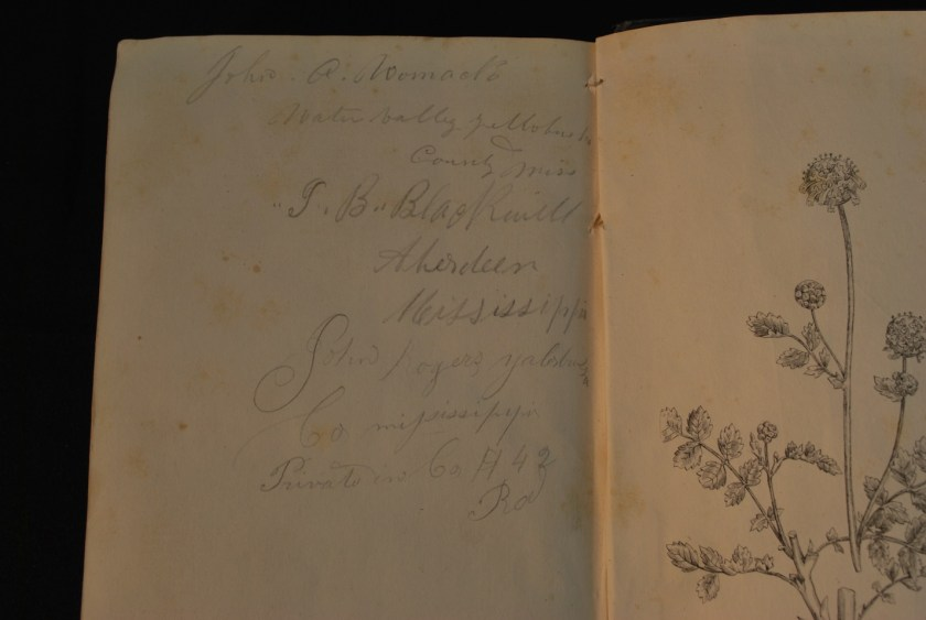 L Wilson signatures