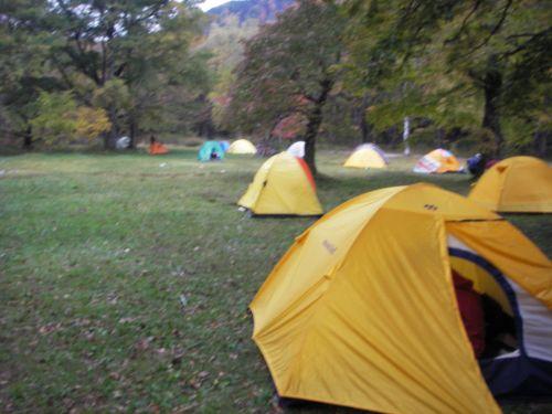 朝の徳沢キャンプ場