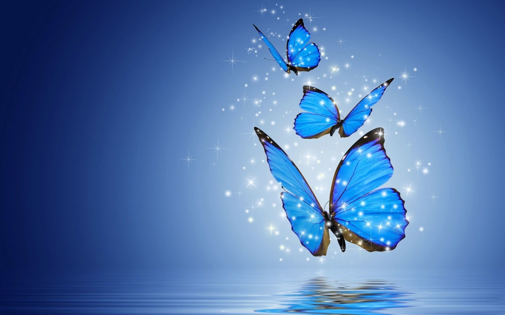 Butterfly Wallpaper for Computer  60  images  1920x1200 Animated butterfly wallpaper desktop   photo 23