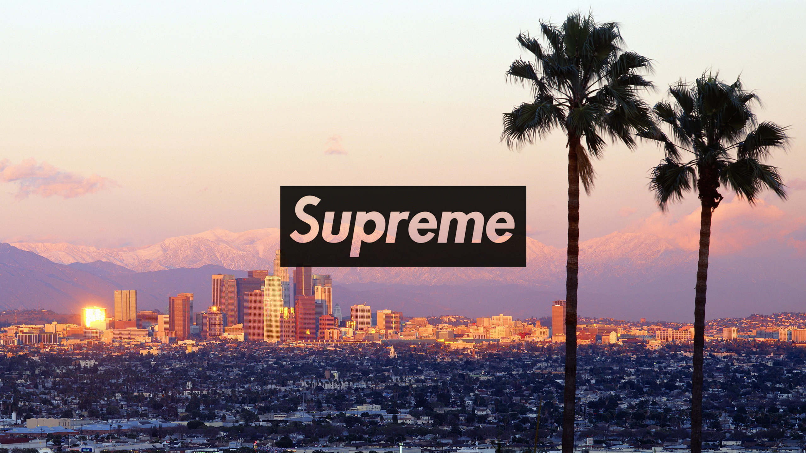 Supreme Wallpaper  73  images  2560x1440 Download the Los Angeles Supreme wallpaper below for your mobile  device  Android phones