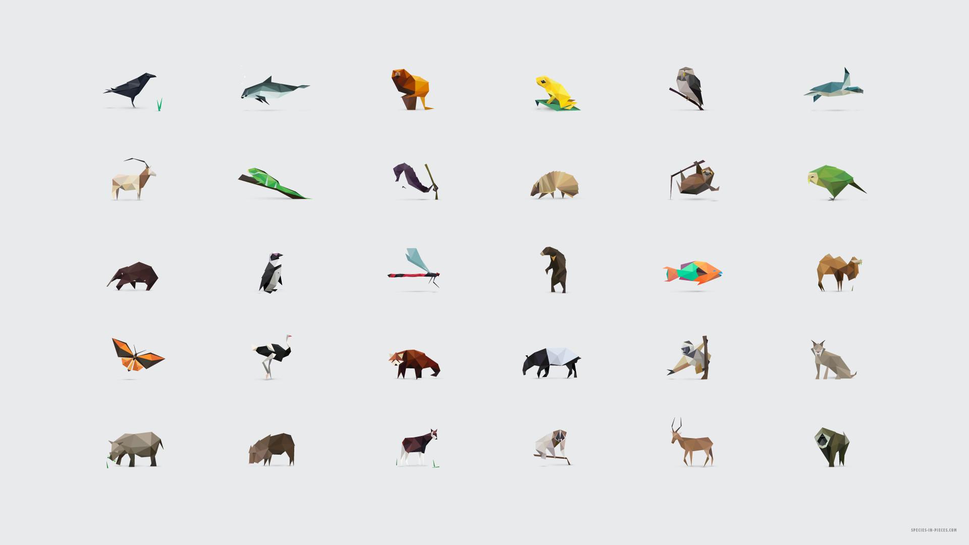 Geometric Animal Wallpaper 74 Images