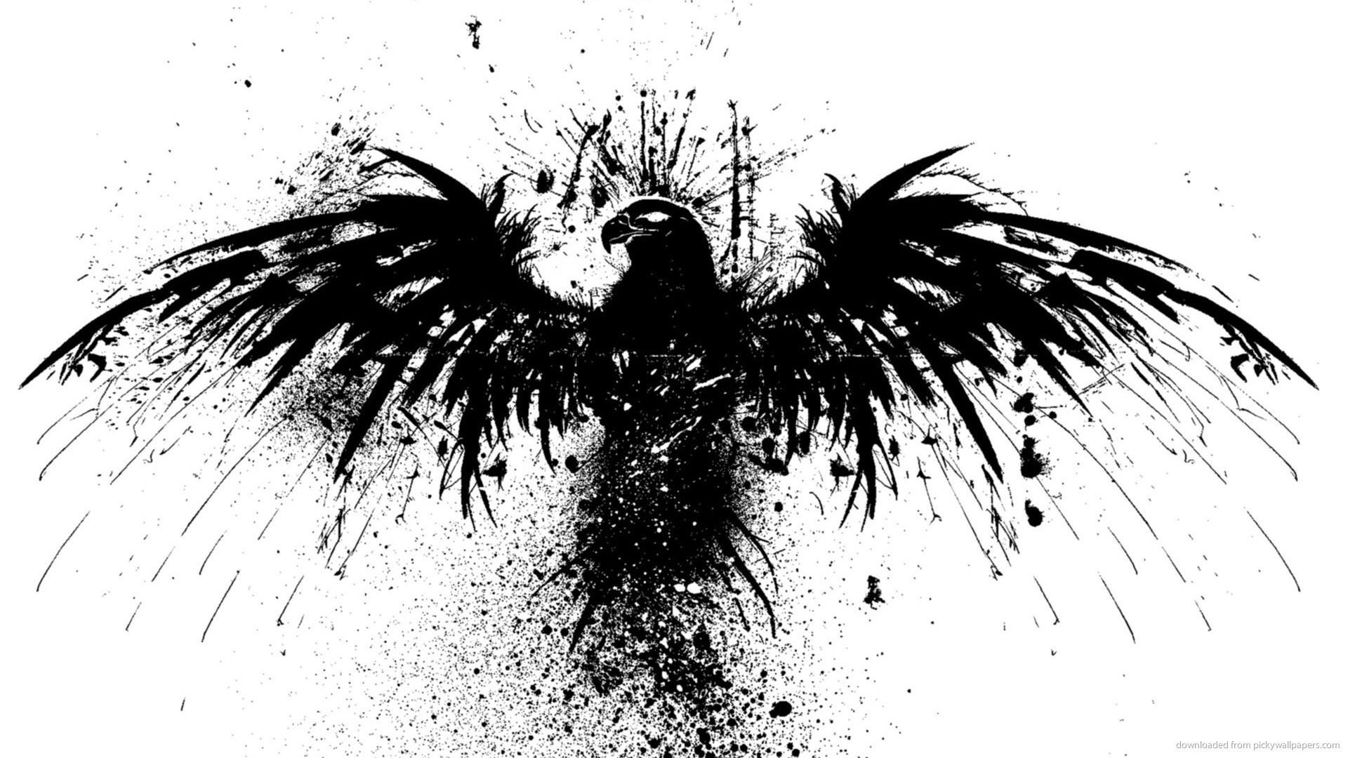 Eagles Wallpaper 67 Images