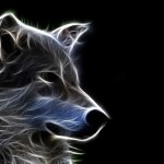 Cool 3D Wallpaper HD Dogs  52  images  1920x1200 3d 3d animals wallpaper 3d animals wallpapers 3d dog 3d hd  wallpapers