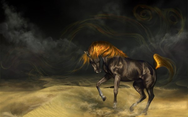 Wild Horse Wallpapers (61+ images)