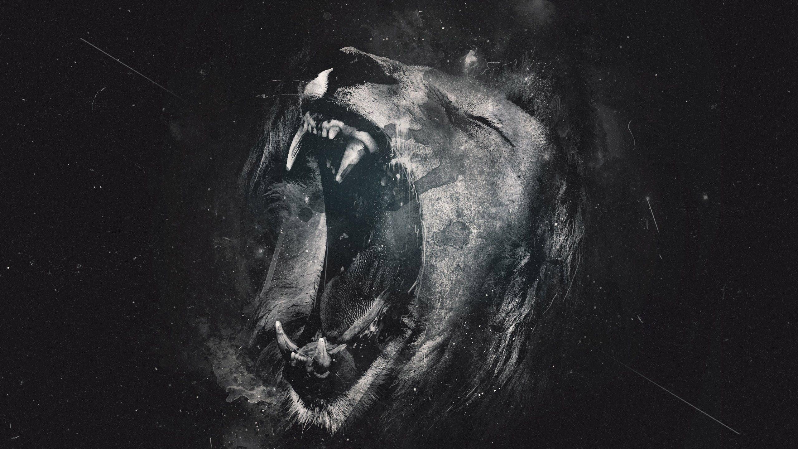 cool lion wallpaper (54+ images)