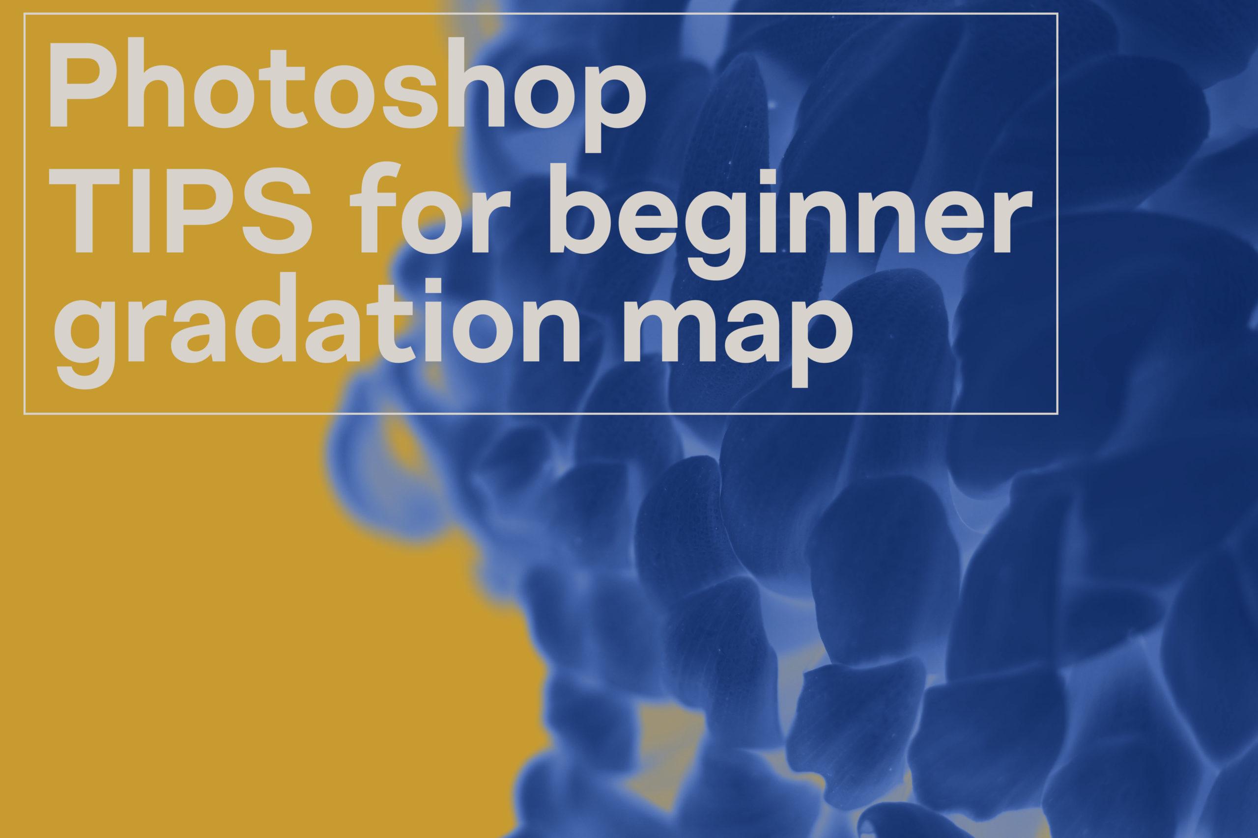フォトショップのグラデーションマップで印象の変わった菊の画像