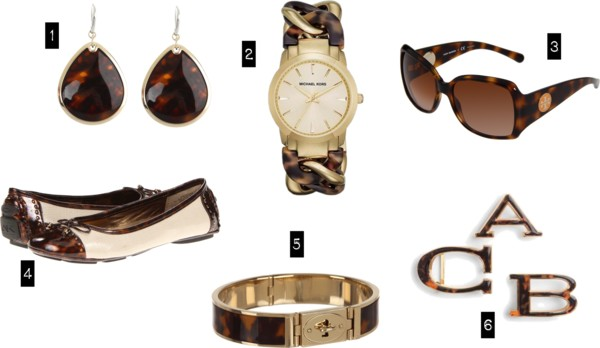The Next Thing You Need   Tortoise Shell