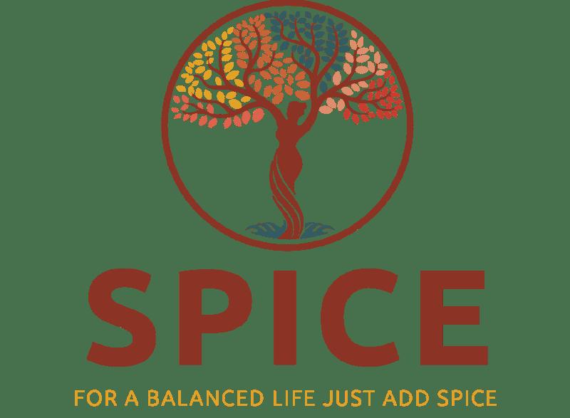 S.P.I.C.E. logo