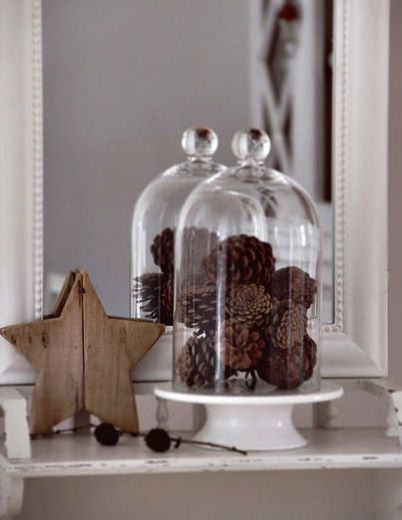 bell jar 6
