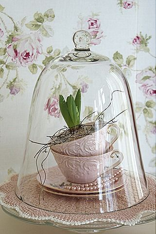 bell jar 7