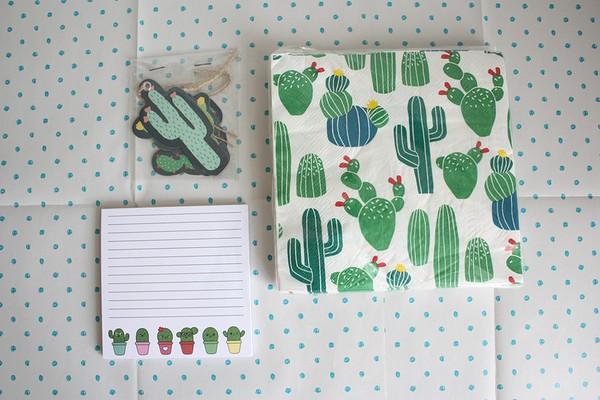 winactie cactus (1)