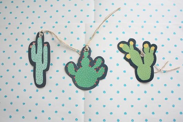 winactie cactus (3)