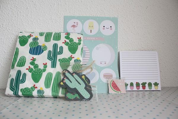 winactie cactus (6)