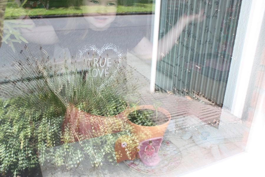 my-fairy-garden-flowerpot-1