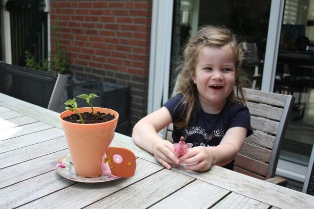my-fairy-garden-flowerpot-6