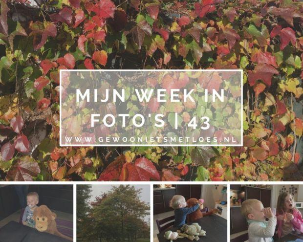 mijn week in foto's 43