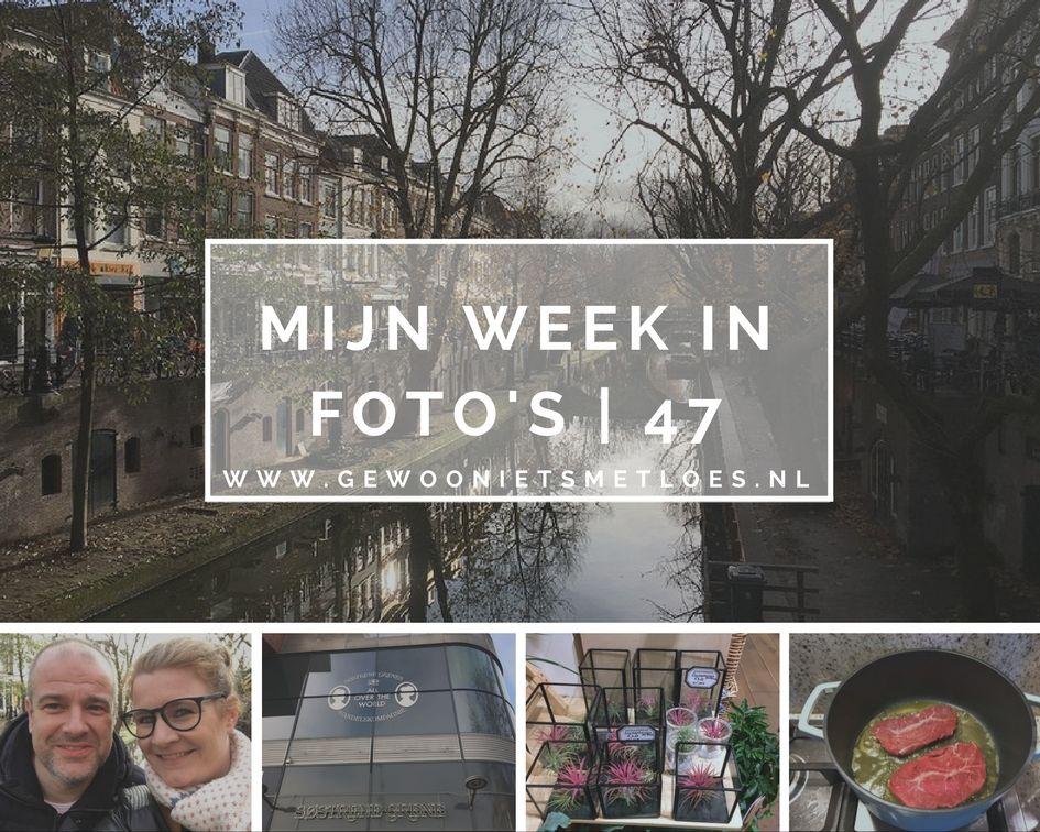 week in foto's 47