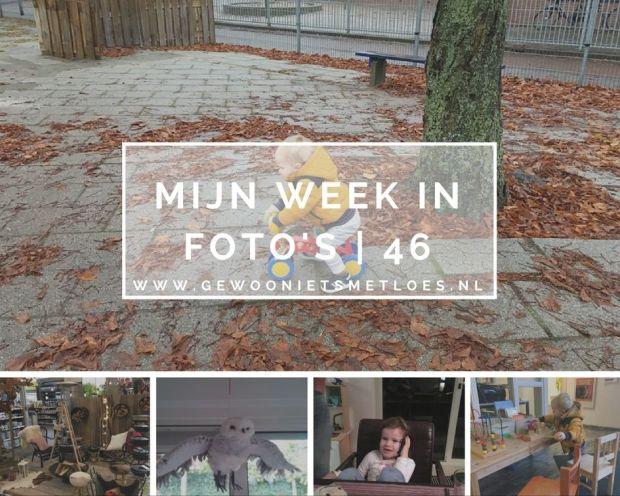 week in foto's   46
